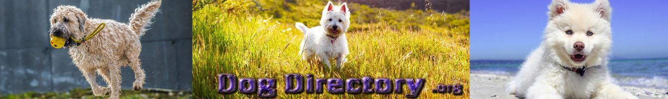 Dog Directory